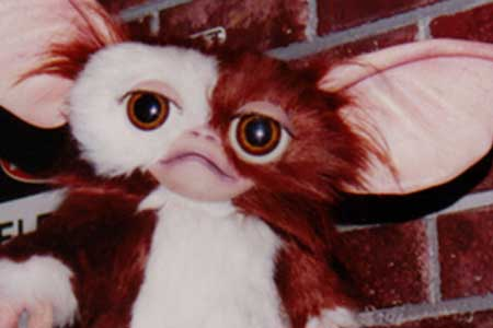 Gizmo theme park character